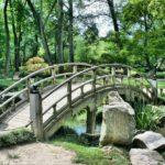 Piękny ,a także zadbany ogród to zasługa wielu godzin spędzonych  w jego zaciszu w trakcie pielegnacji.